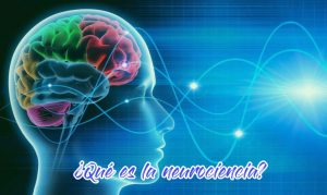 que-es-la-neurociencia